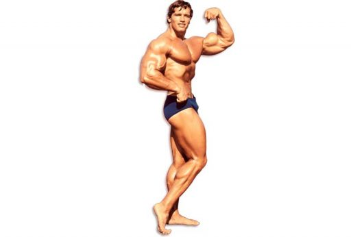 ARNOLD-SCHWARZENEGGER-fitness
