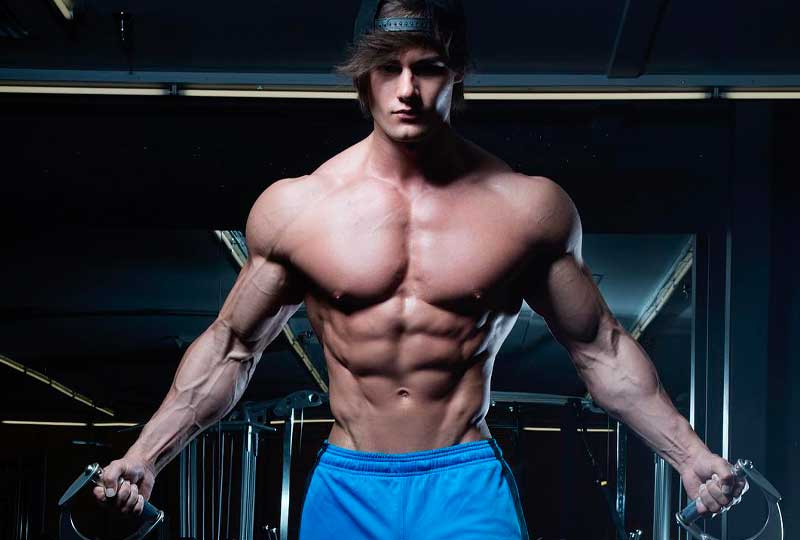 jeff-seid-gladiadores-fit