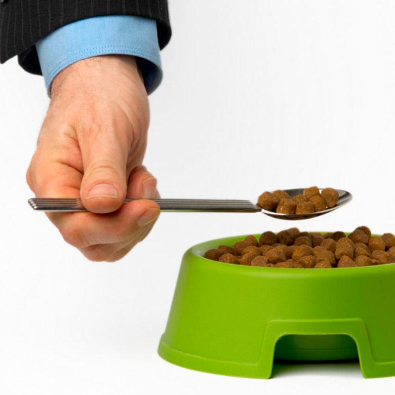 dieta-con-comida-de-perro