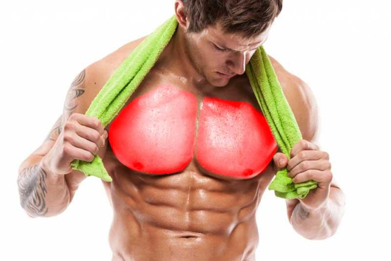 ejercicios-para-pecho-gym