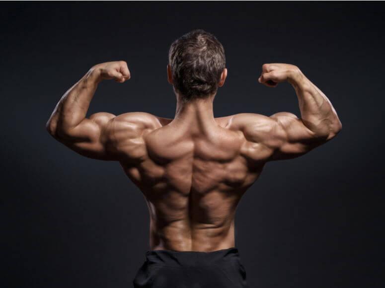ejercicios para lumbares