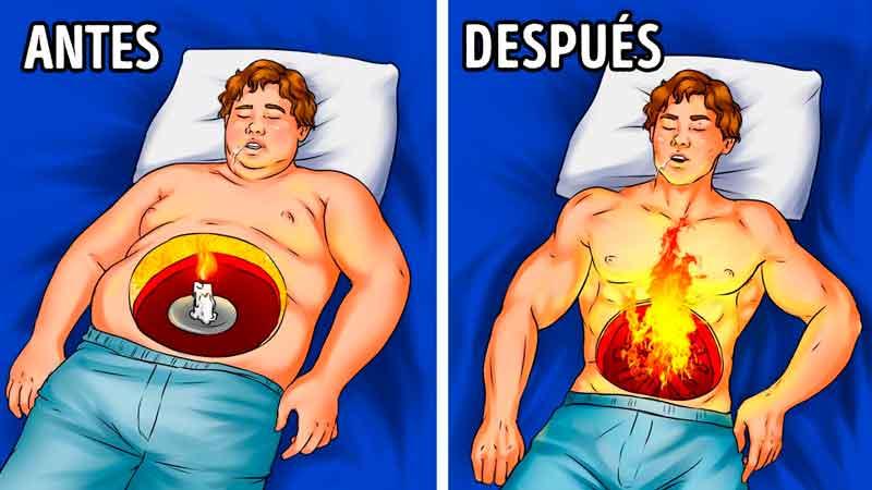 perder peso mientras duermes