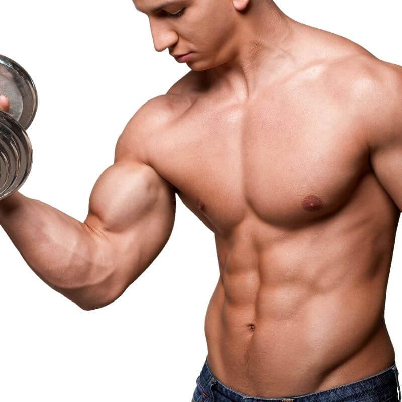 proteina para ganar músculo